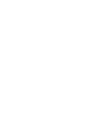 Owl-White-Transparent